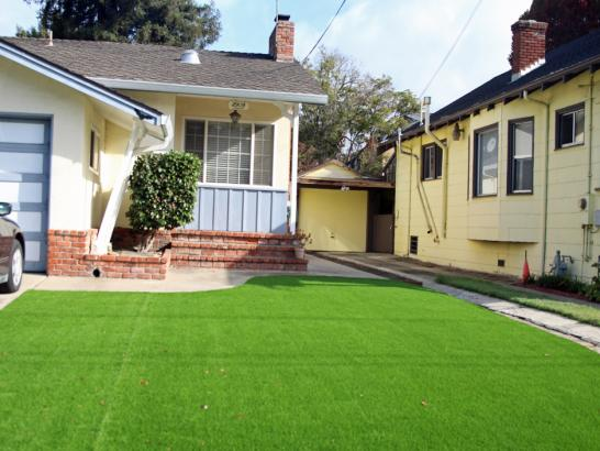 Artificial Grass Photos: Synthetic Grass Cost Pompano Beach, Florida Landscape Design, Front Yard Landscape Ideas