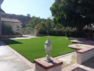 Artificial Grass Photos: Synthetic Grass Everglades City, Florida Landscaping Business, Front Yard Ideas