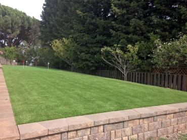 Artificial Grass Photos: Synthetic Grass Gibsonia, Florida Putting Green Flags, Backyard Ideas