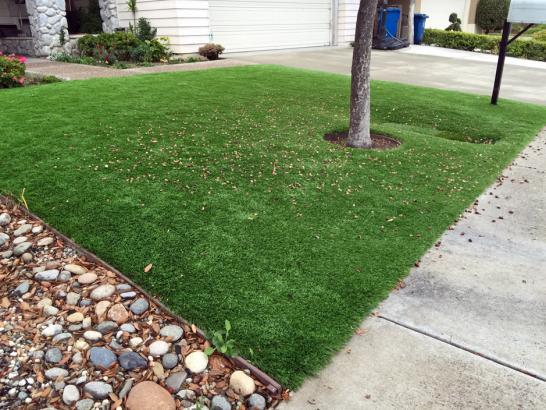 Artificial Grass Photos: Synthetic Grass Wellington, Florida Roof Top, Front Yard Ideas