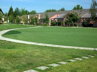 Artificial Grass Photos: Synthetic Lawn Laurel, Florida Lawn And Garden, Commercial Landscape