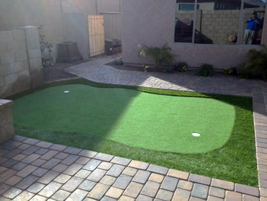 Artificial Grass Photos: Synthetic Lawn Manalapan, Florida Landscaping, Backyard Garden Ideas