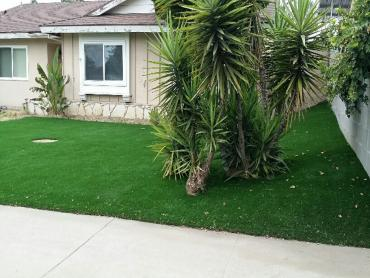 Artificial Grass Photos: Synthetic Lawn Saint Cloud, Florida Lawn And Landscape, Front Yard Design