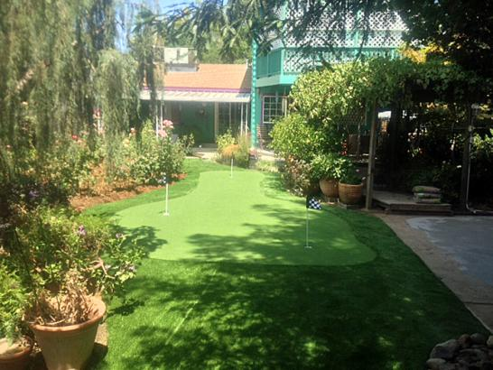 Artificial Grass Photos: Synthetic Turf Carol City, Florida Gardeners