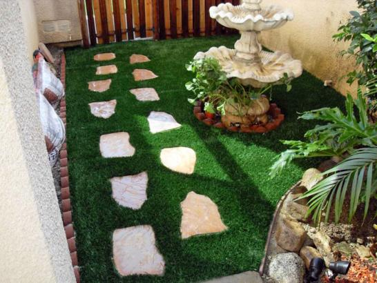 Artificial Grass Photos: Synthetic Turf Port Salerno, Florida Landscape Design, Backyard Garden Ideas