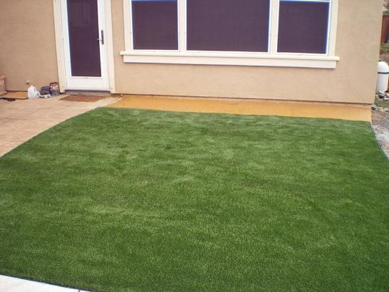 Artificial Grass Photos: Synthetic Turf Supplier Gulf Stream, Florida Home And Garden, Backyard Landscaping Ideas