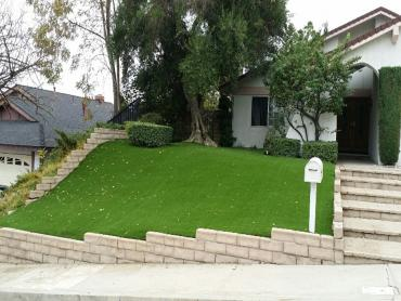 Artificial Grass Photos: Synthetic Turf Supplier Lake Hamilton, Florida Rooftop, Landscaping Ideas For Front Yard