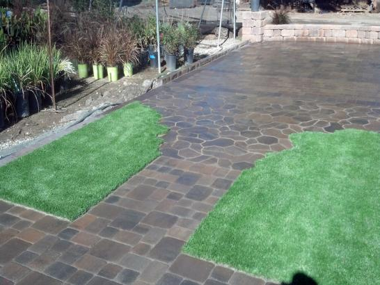 Artificial Grass Photos: Synthetic Turf Supplier Palm Beach Shores, Florida Roof Top, Backyard Garden Ideas