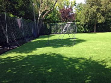 Artificial Grass Photos: Synthetic Turf Vero Beach, Florida Sports Turf, Backyard Designs