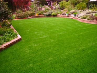 Artificial Grass Photos: Turf Grass Cocoa Beach, Florida Landscape Rock, Backyards