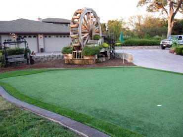 Artificial Grass Photos: Turf Grass Frostproof, Florida Putting Green Grass, Landscaping Ideas For Front Yard