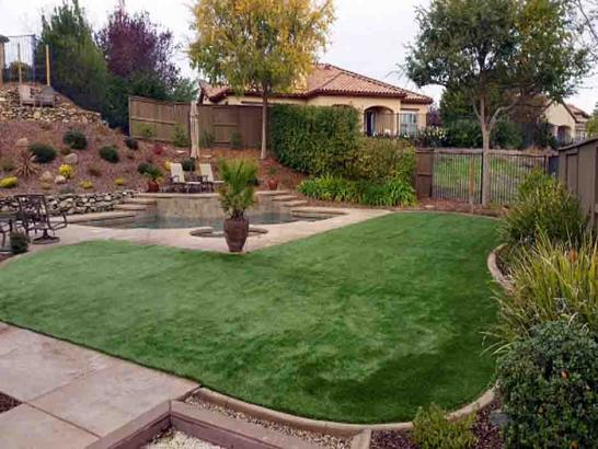 Artificial Grass Photos: Turf Grass Lake Park, Florida Home And Garden, Backyard Landscape Ideas
