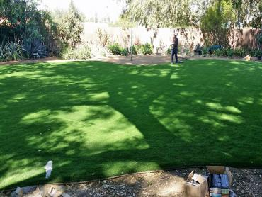 Artificial Grass Photos: Turf Grass Mulberry, Florida Paver Patio, Backyard Designs