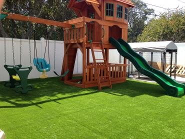 Artificial Grass Photos: Turf Grass Naples Manor, Florida Backyard Playground, Backyard Landscaping Ideas