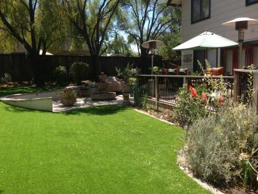Artificial Grass Photos: Turf Grass Schall Circle, Florida Roof Top, Backyard Designs