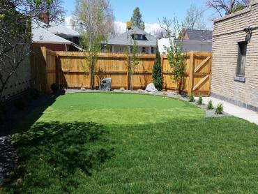 Artificial Grass Photos: Turf Grass Sunrise, Florida Lawns, Small Backyard Ideas