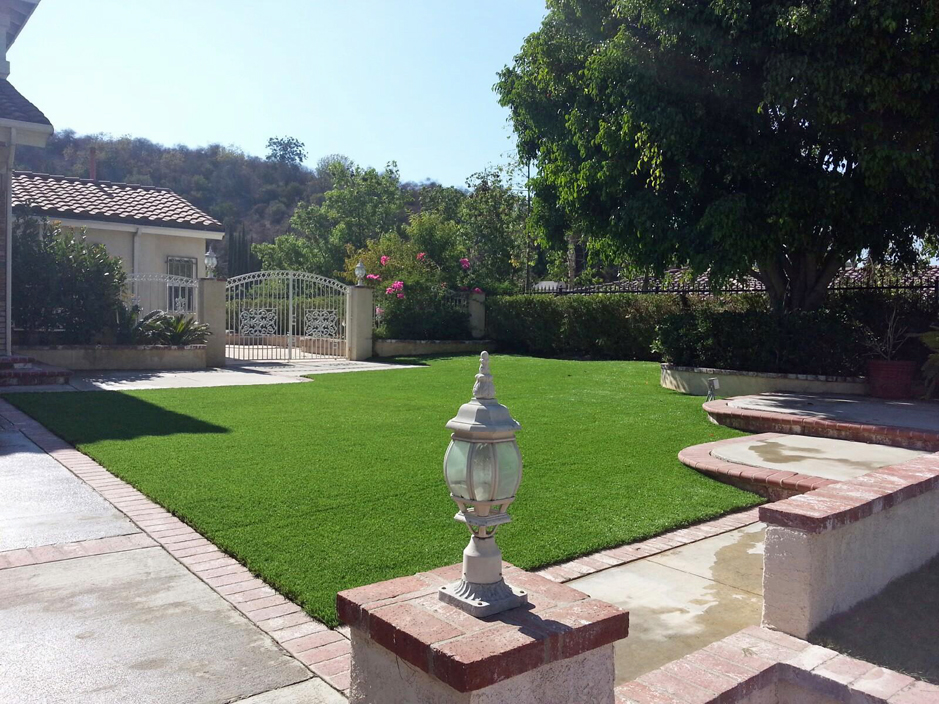 Synthetic grass everglades city florida landscaping for Florida landscape ideas front yard