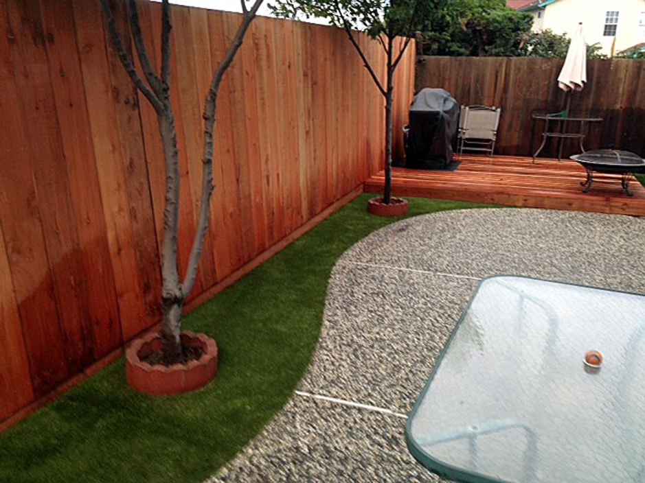 No Grass Backyard For Dogs : Synthetic Grass Naples, Florida Grass For Dogs, Small Backyard Ideas