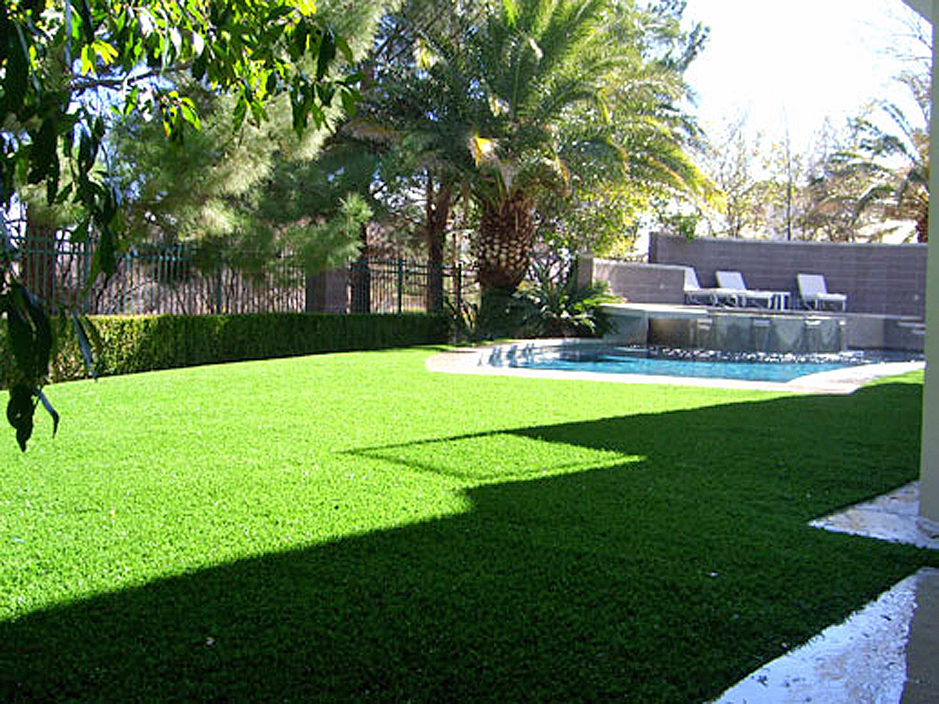 Artificial Grass Punta Rassa, Florida Design Ideas ... on Artificial Turf Backyard Ideas id=49329